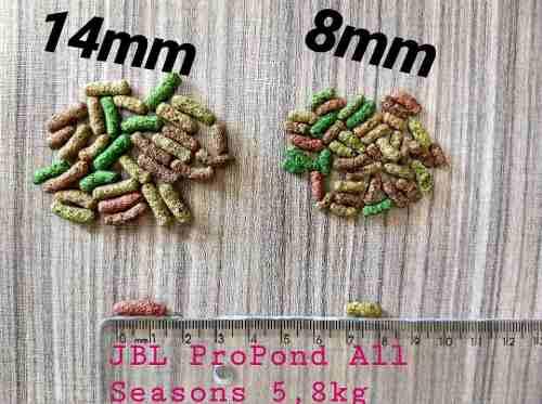 Ração Para Carpas Jbl Pond Sticks (4 In 1) - 5 Kg