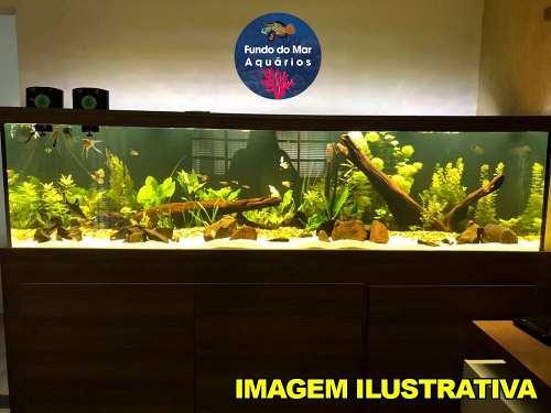 Luminária Led Nemo Light Plantado 72w Garantia De 1 Ano