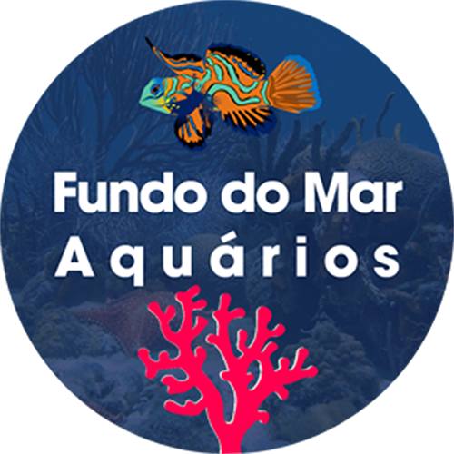 Enfeite Casa do Lula Molusco (Turma do Bob Sponja) - Fragata