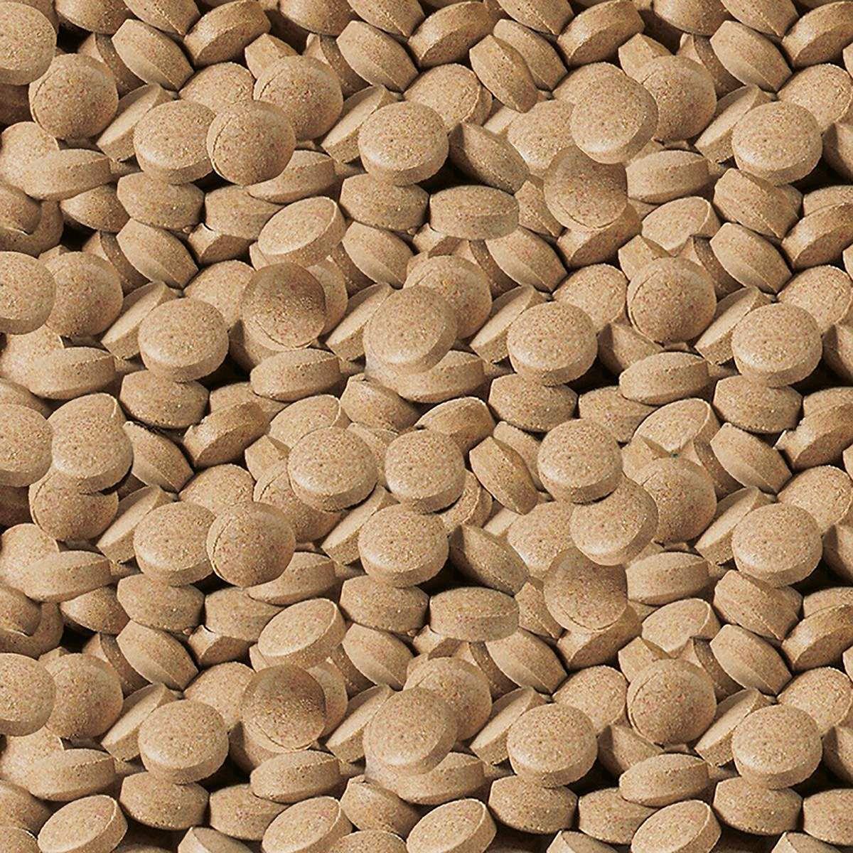 Sera Ração Viformo Alimento em Pastilhas 33g