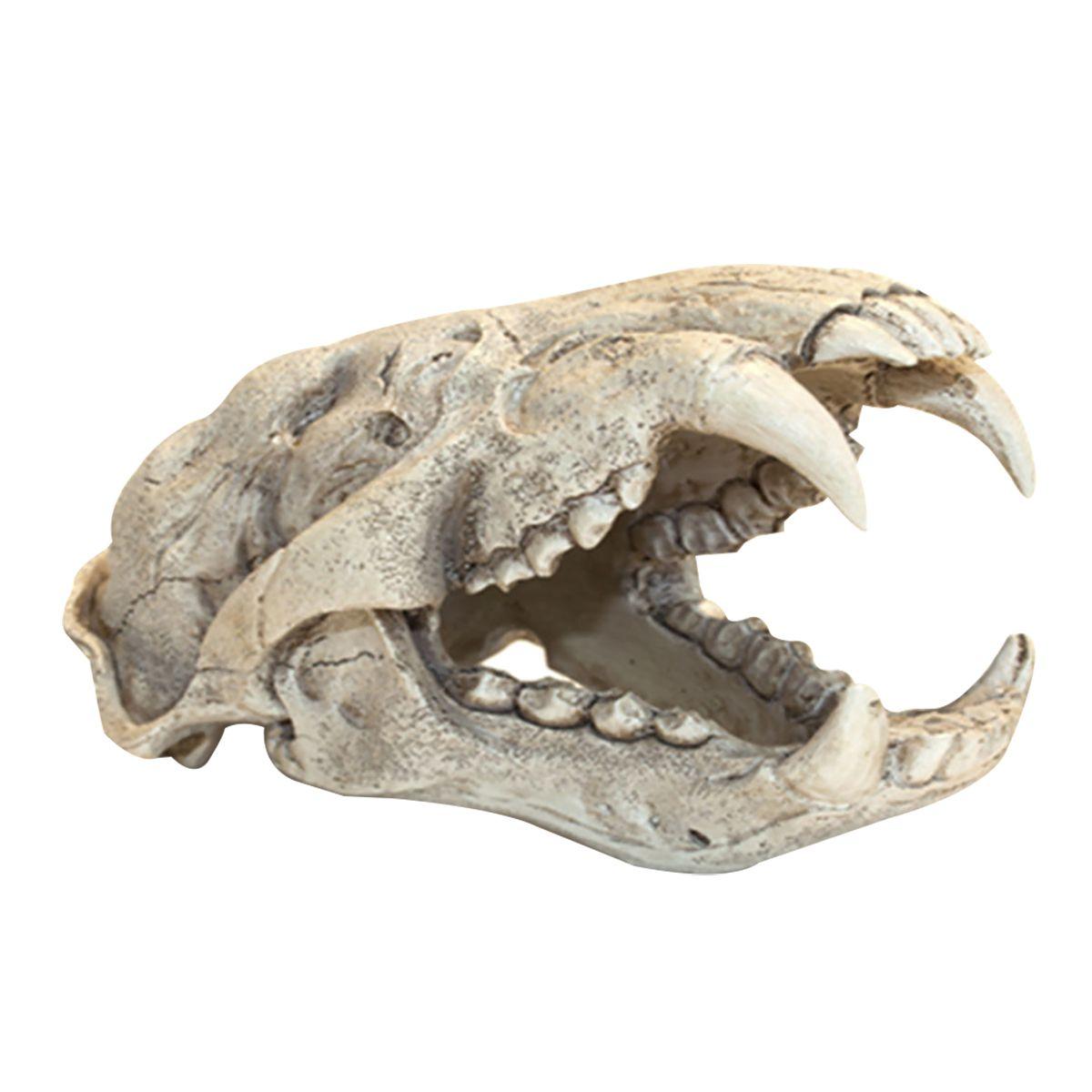 SOMA Enfeite de Resina Esqueleto Cabeça de Puma - 054099