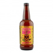 Cerveja 5 Elementos e Infected Caribbean Dream 500 ml