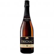 Cerveja Kasteel Trignac XII 750 ml