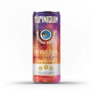 Cerveja Tupiniquim Nebulosa Lata 350 ml