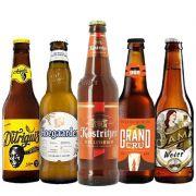Kit de Cervejas Apaixonados por Cerveja de Dezembro