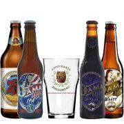 Kit de Cervejas Dama Bier com 4 rótulos e Taça Hallertau