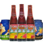 Kit de Cervejas do Estilo Fruit Beer