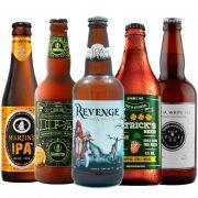 Kit de Cervejas do Estilo Ipa contendo 5 Rótulos