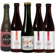 Kit de Cervejas Zalaz Contendo 5 Rótulos