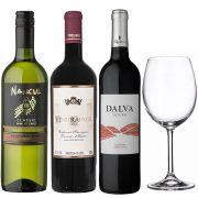 Kit de Vinhos com Taça de Cristal 580 ml - Clube de Assinaturas 1