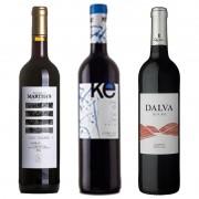Kit de Vinhos Tinto contendo 3 Rótulos