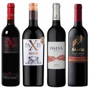 Kit de Vinhos Tinto contendo 4 Rótulos