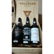 Kit de Vinhos Vallegre Douro contendo 3 Rótulos
