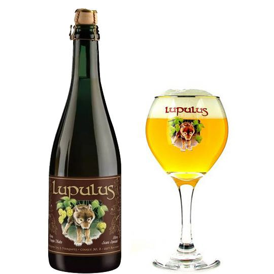 Kit Lupulus Brune 750 ml com Taça