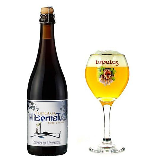 Kit Lupulus Hibernatus 750 ml com Taça