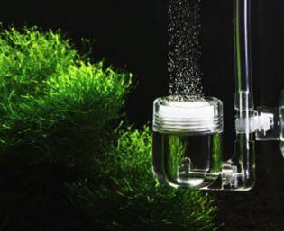 Difusor cerâmico p/ CO2 16mm de plástico