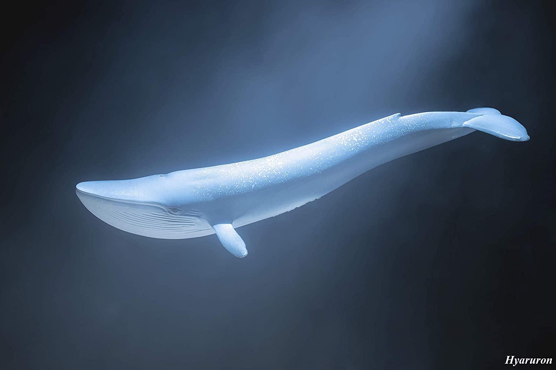 Schleich North America Baleia Azul Oficial Licenciado