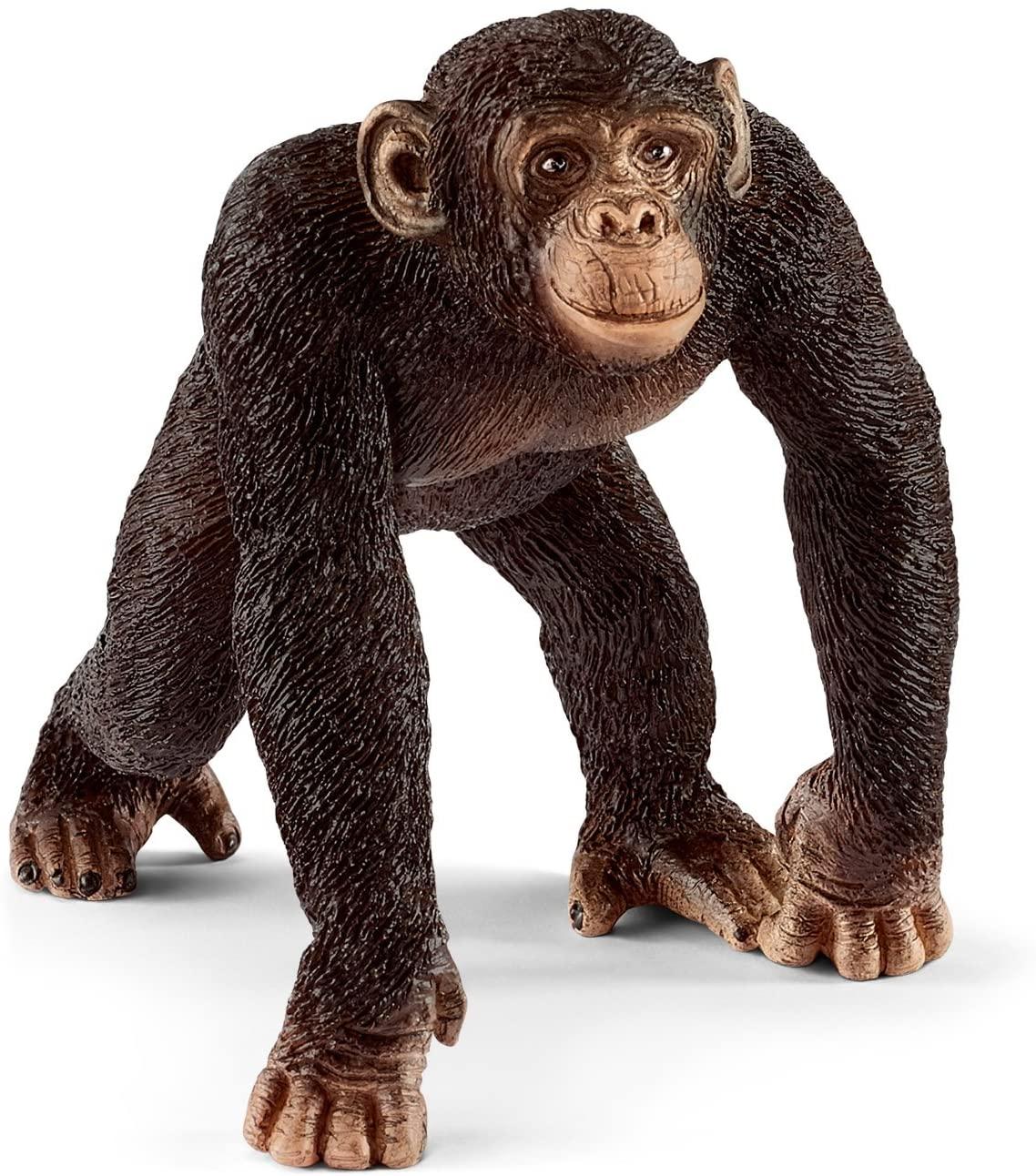 Schleich North America Wild Life Chimpanzee