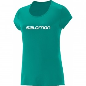 Camiseta Trail Running Training IV Feminina Salomon