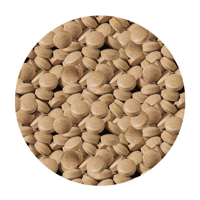 Ração Sera Viformo 68 g (pastilhas)