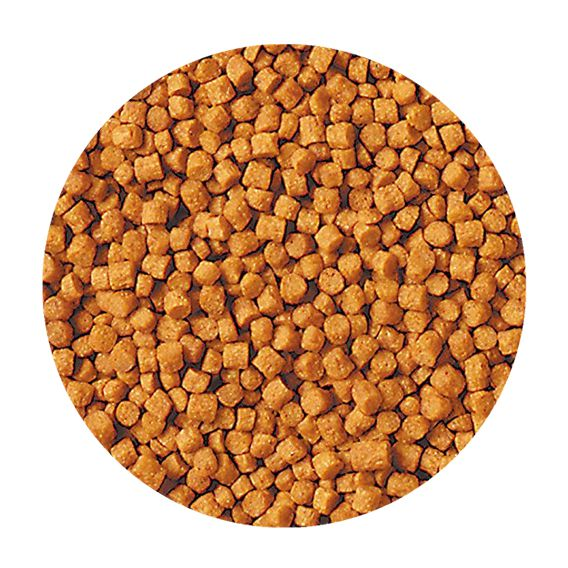 Ração Tetra Goldfish Growth Pellets 40 g