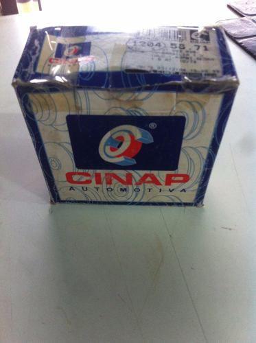 Tampa Dinamo