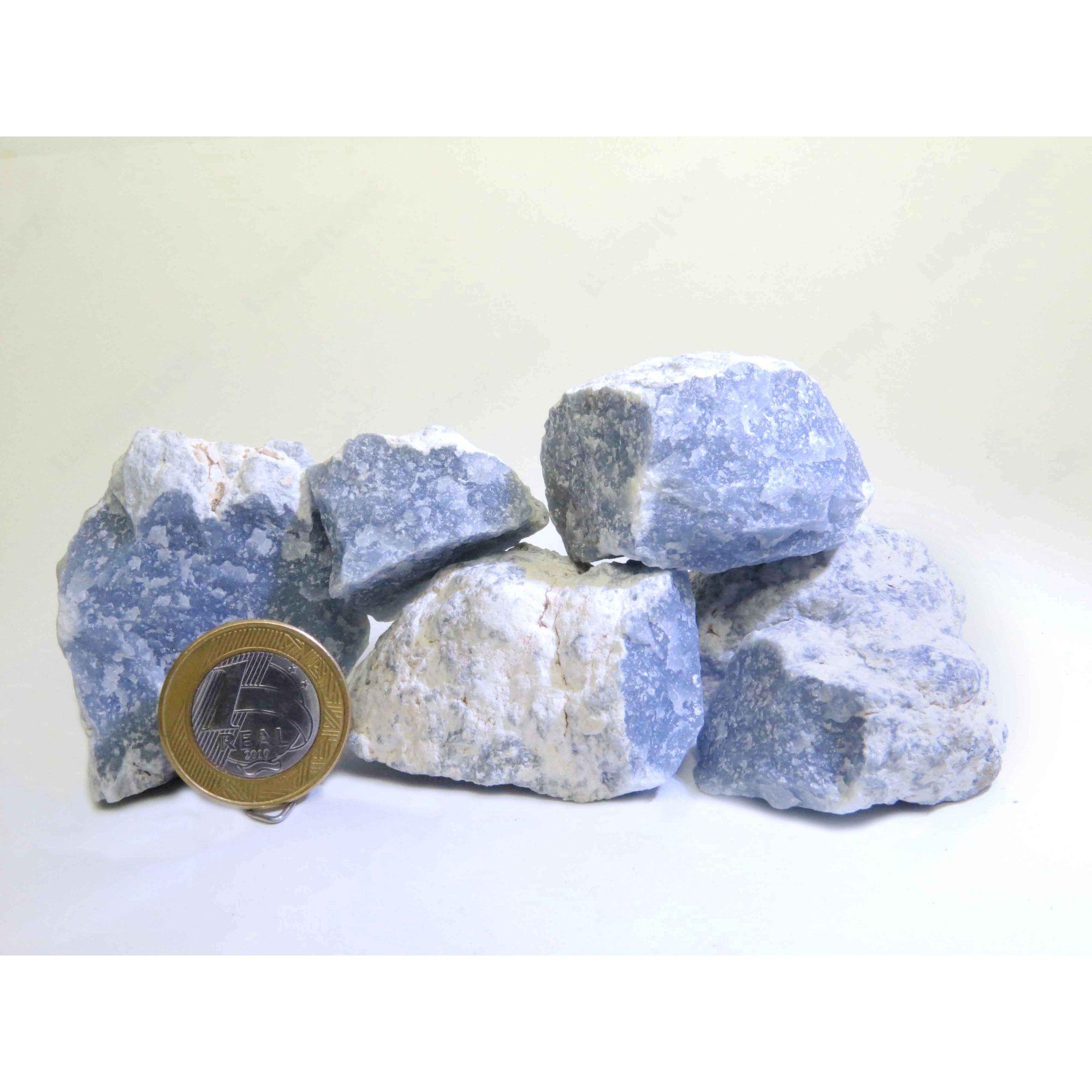 Angelita - Bruto   Pacote com 2 Unidades