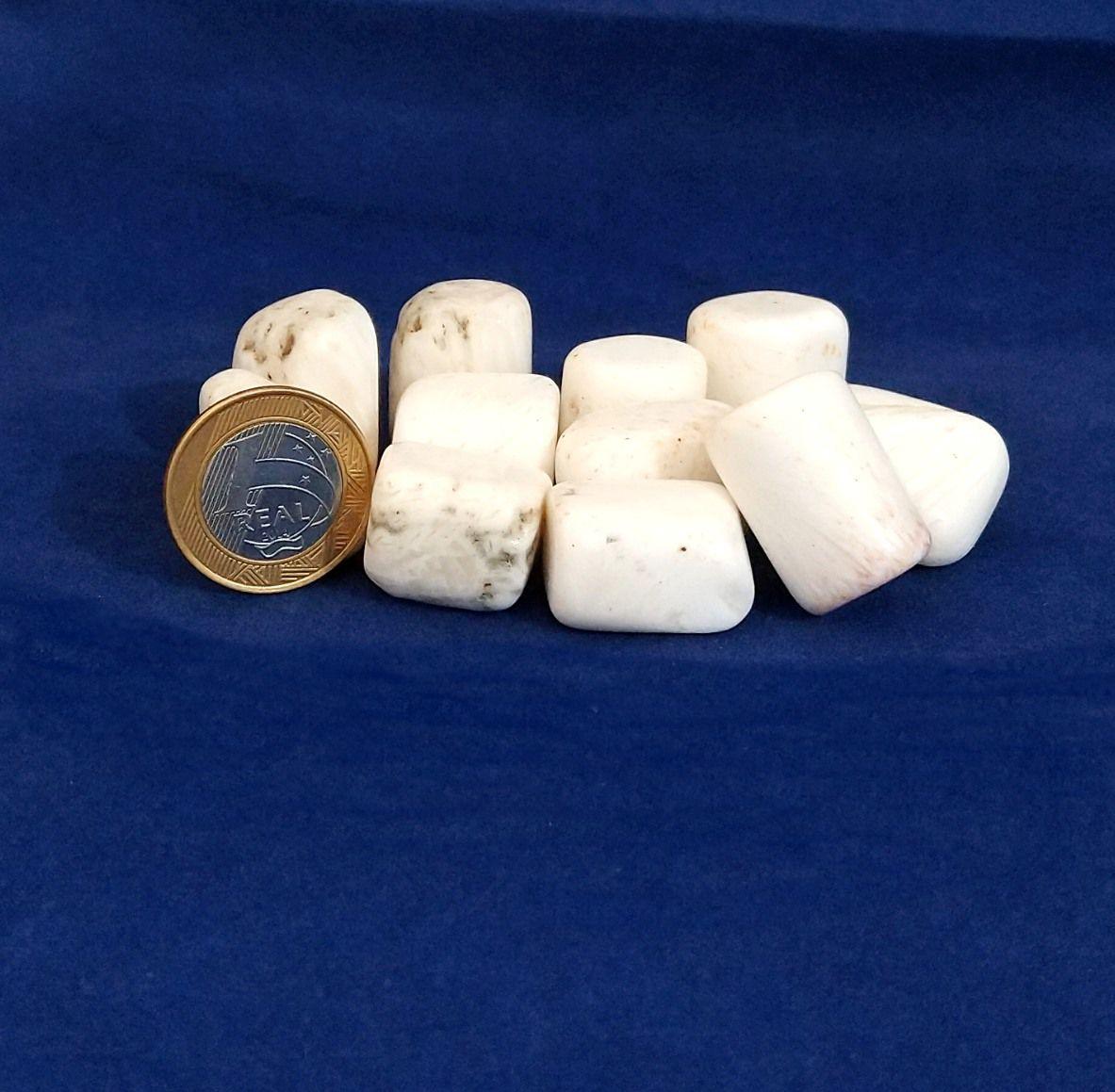 Escolecita - Rolado - 2 a 3 cm