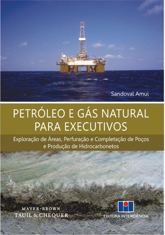 Petróleo e Gás Natural para Executivos - Exploração de Áreas, Perfuração e Completação de Poços e Produção de Hidrocarb.