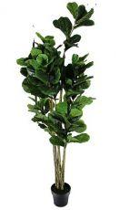 Árvore - 180cm Altura X 80cm Largura