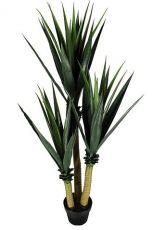 Árvore Babosa - 130cm Altura X 50cm Largura