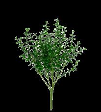 Folhagem de Eucalipto - 30cm Altura X 10cm altura