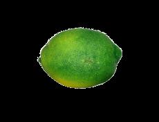 Limão - 10cm Altura X 7cm Largura