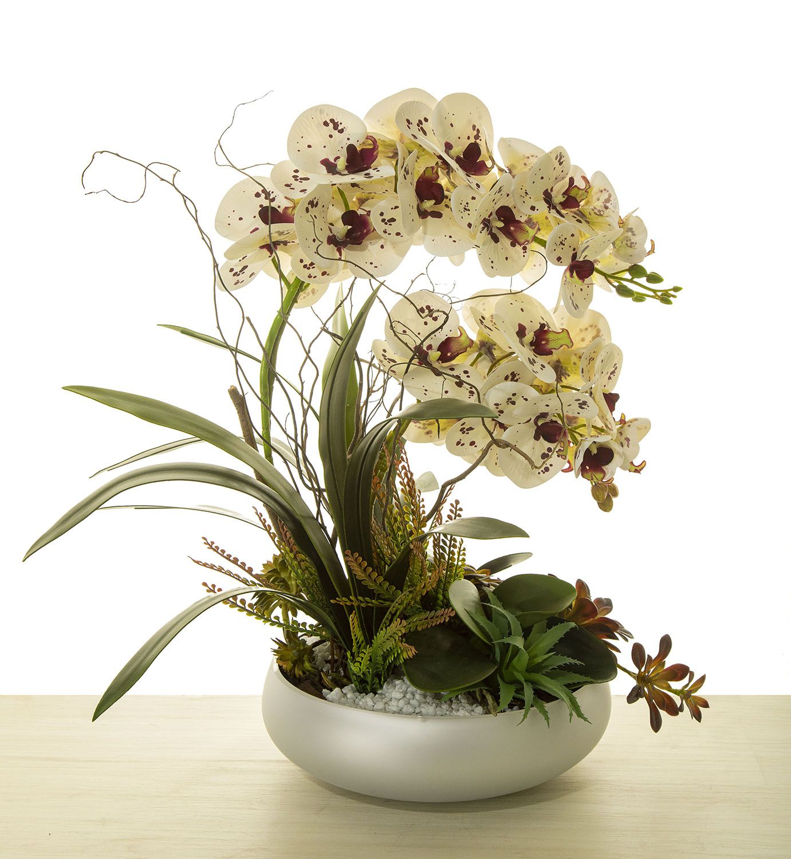 Arranjo De Orquídea Para O Dia Das Mães