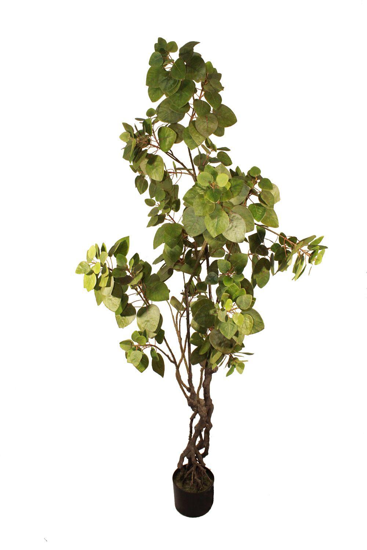 Árvore - 180cm Altura X 50cm Largura