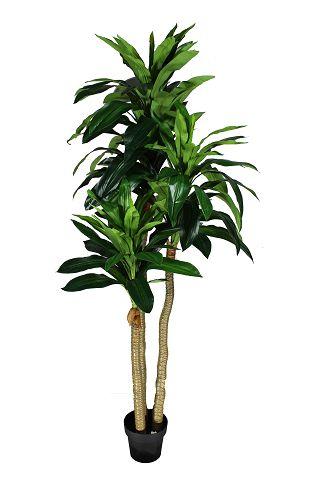 Árvore - 190Cm Altura X 60Cm Largura