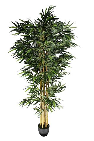 Arvore Bambu - 223Cm Altura X 50Cm Largura