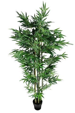 Árvore Bambu - 190cm Altura X 60cm Largura