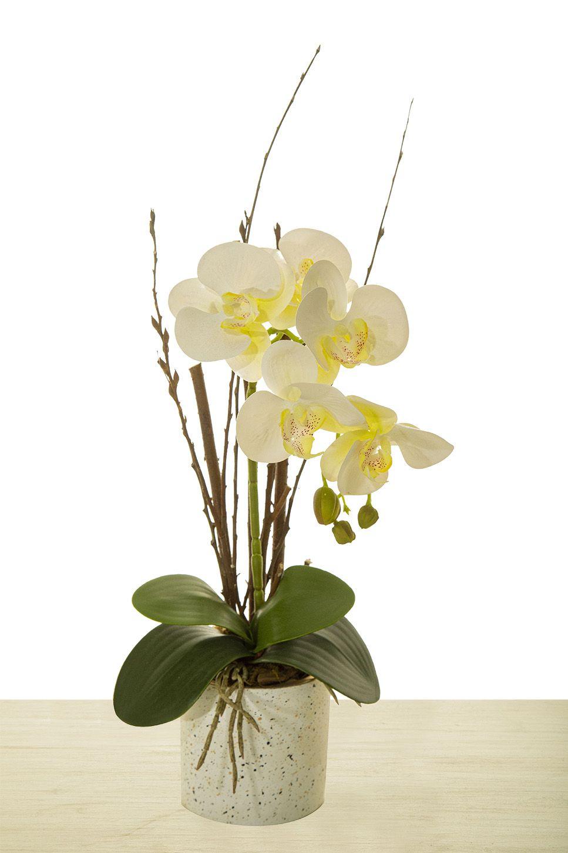 Arranjo De Orquídea Branca Para O Dia Das Mães