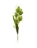 Flor de orquídea C/Folha - X5 - 57cm - Verde