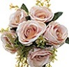 ROSA X6 C/ COMPLEMENTO NUDE
