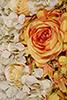 tapete de flor branco com laranja