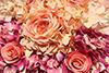 Tapete de Flor Rosa