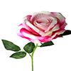 Rosa unitária - 51cm - Rosa