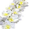 Flor de orquídea - X20 - 83cm -  Branca com amarelo