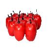 Mini Maçã - Pct/12Un. - 5,30cm Altura - Vermelha