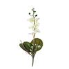 Flor de orquídea C/Folha - X8 - 50cm Altura - Branco Com Amarelo