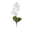 Flor de orquídea C/Folha - X8 - 52cm Altura - Branco Com Vermelho