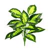 Folhagem - X18 - 62cm altura - Verde escuro com macha clara