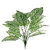 Folhagem - X18 - 62cm altura - Verde claro com Listras